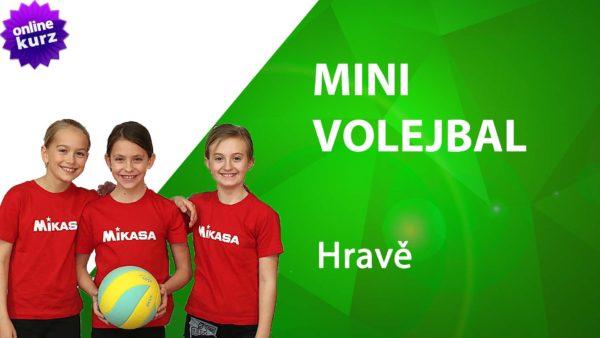 online kurz minivolejbal hravě