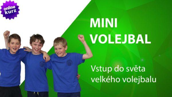 online kurz minivolejbal vstup do světa velkého volejbalu