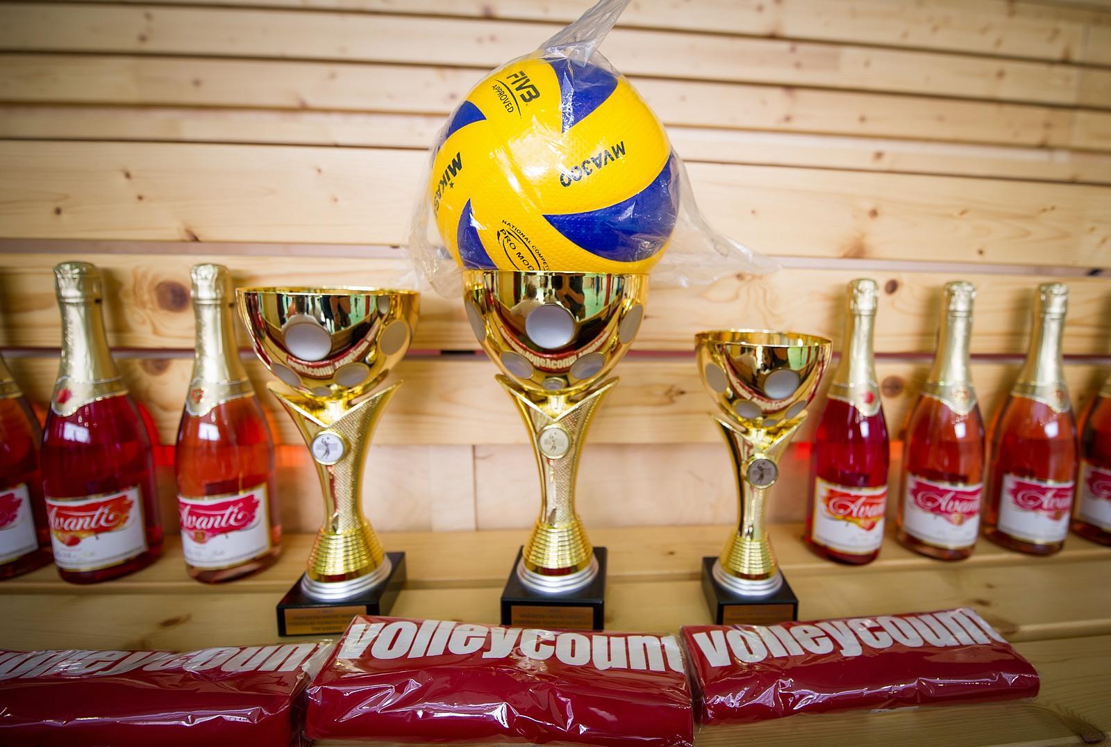 Vysokoskolska volejbalova liga