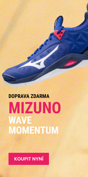 mizuno wave momentum