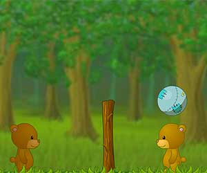 """Volleyball """"BearBall"""""""