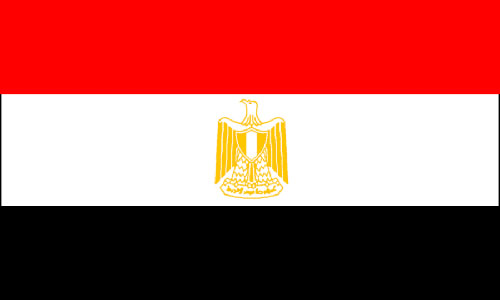 WL 2013 Qualifications: Egyptian squad selected