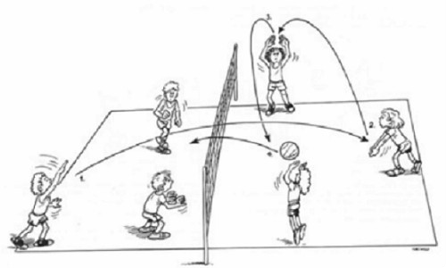 Mini-Volleyball: How to develop the potential in a future volleyball player?