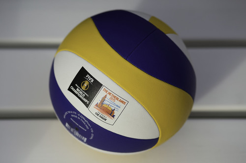 bvb wch2015 preview 2