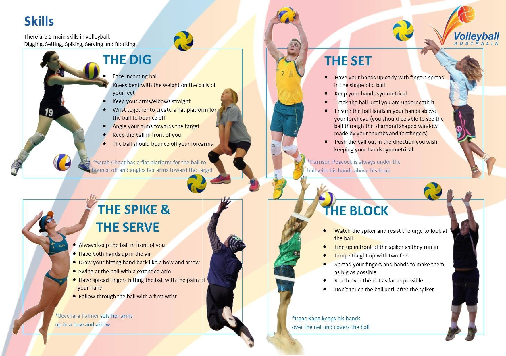volleyball infographics skills