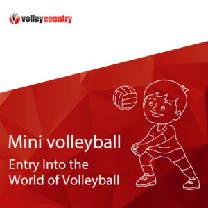 mini volleyball online course volleyball