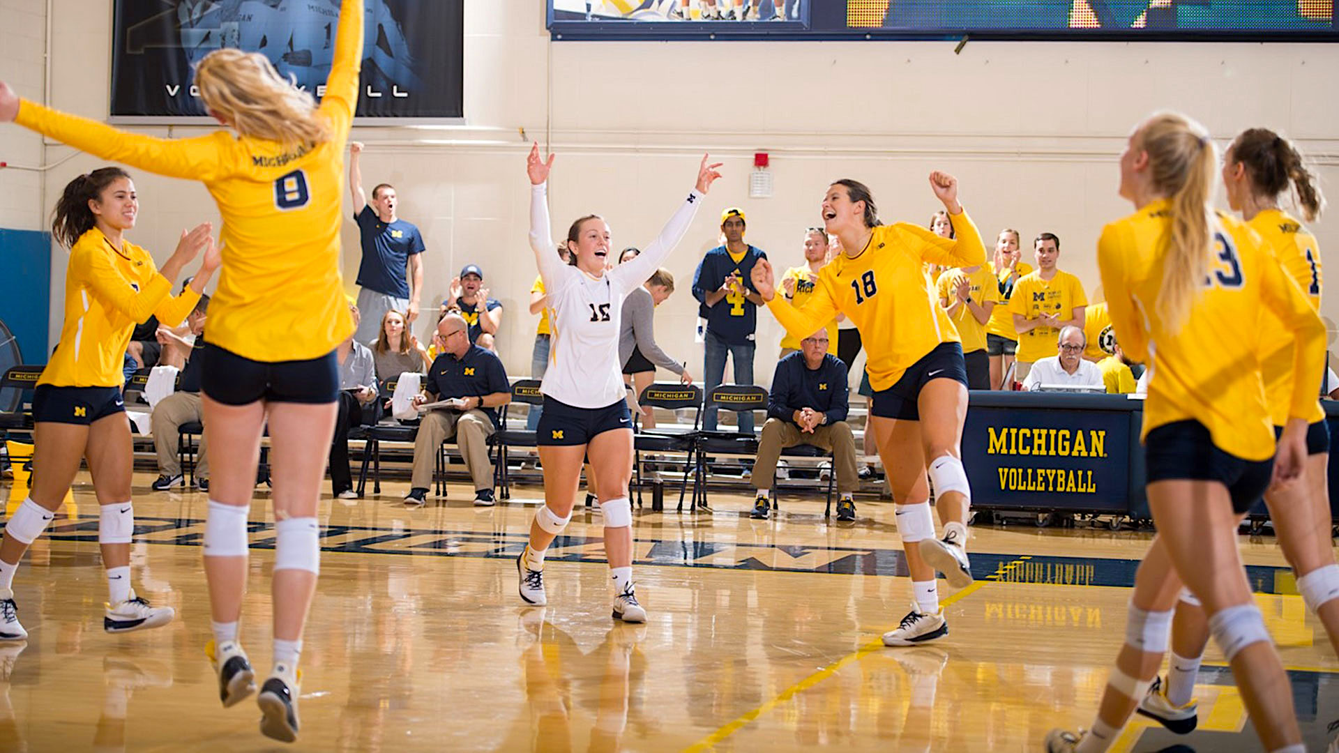 10 Best Volleyball Colleges In The Us Volleycountry