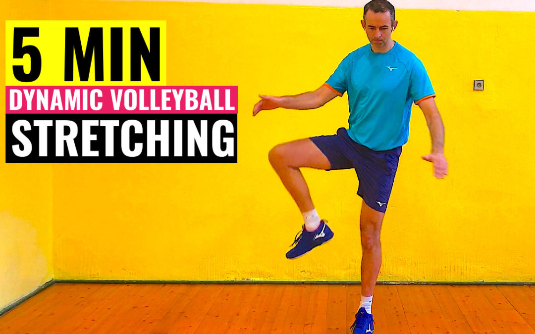 5 min dynamic volleyball stretching